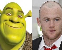 Wayne Rooney og Shrek sammenligning